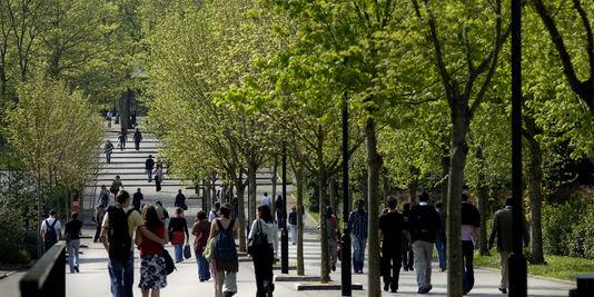 1533212_3_2b61_sur-le-campus-de-l-universite-de-nantes